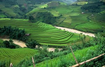 उत्तराखंड सहित कई राज्यों ने दी कांट्रैक्ट कृषि कानून को हरी झंडी